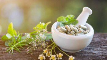 remédio natural para emagrecer